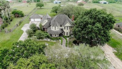 Friendswood Single Family Home For Sale: 905 W Viejo Drive