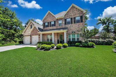 Montgomery Single Family Home For Sale: 102 Golden Eye Court