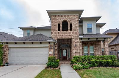 Sugar Land Single Family Home For Sale: 5011 Blackwater Lane