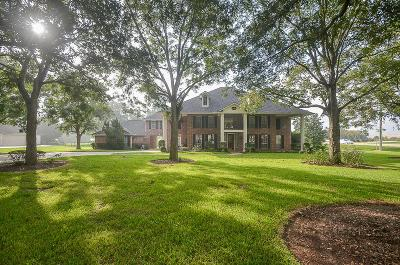 Missouri City Single Family Home For Sale: 4119 Silver Ridge