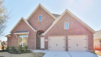 Pearland Single Family Home For Sale: 13508 Canyon Gale Lane