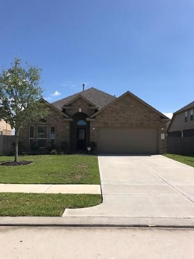 Katy Single Family Home For Sale: 4115 Murano Gardens Court