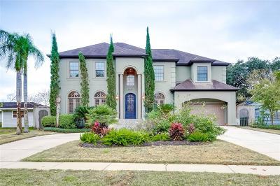 Meyerland Single Family Home For Sale: 5031 Grape Street
