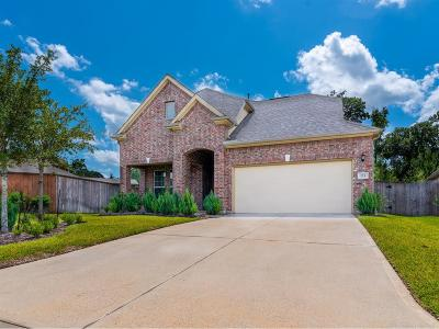 Montgomery Single Family Home For Sale: 223 Capriccio Lane