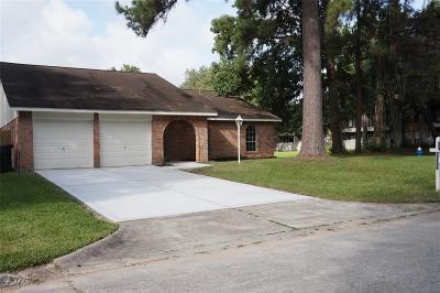 Houston Single Family Home For Sale: 2902 Birch Creek Drive