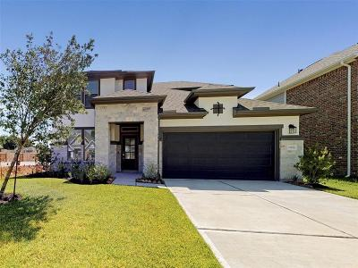 Tomball Single Family Home For Sale: 21826 Rose Maris