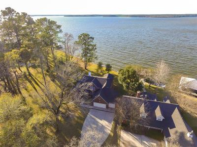 Willis Single Family Home For Sale: 14040 Lakepoint Drive