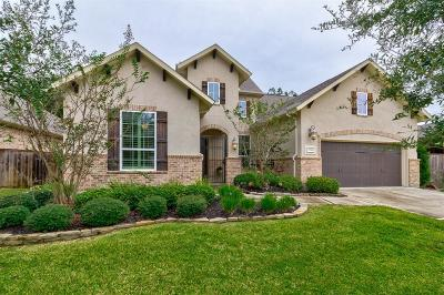 Porter Single Family Home For Sale: 19841 Cullen Ridge Drive