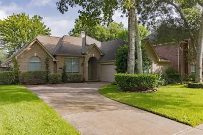 Sugar Land Single Family Home For Sale: 1107 Wood Fern Drive
