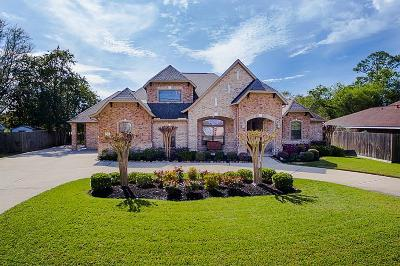 Sugar Land Single Family Home For Sale: 722 Oyster Creek Drive