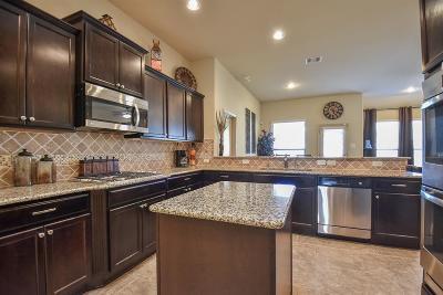 Richmond Single Family Home For Sale: 11726 Balvano Drive