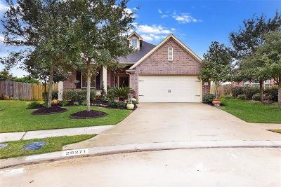 Katy Single Family Home For Sale: 28271 Helmsman Knolls Drive