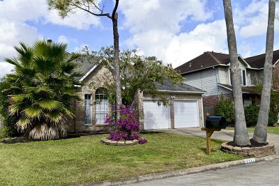 Houston Single Family Home For Sale: 12922 Avenida Vaquero Street