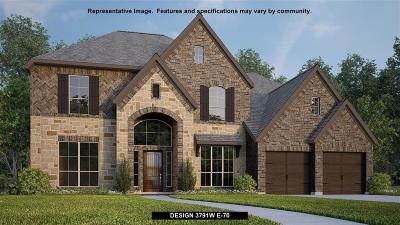 New Caney Single Family Home For Sale: 18868 Collins View Drive