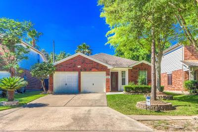 Houston Single Family Home For Sale: 17302 Shadow Ledge Drive