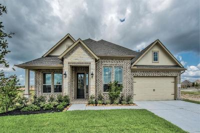 League City Single Family Home For Sale: 1706 Hartford Mills Lane