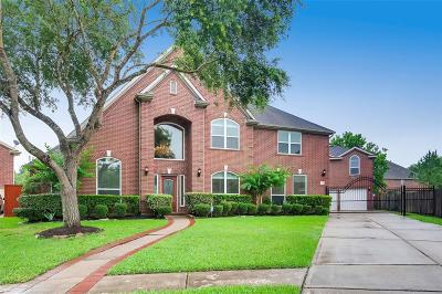 Sugar Land Single Family Home For Sale: 3903 Garnet Falls