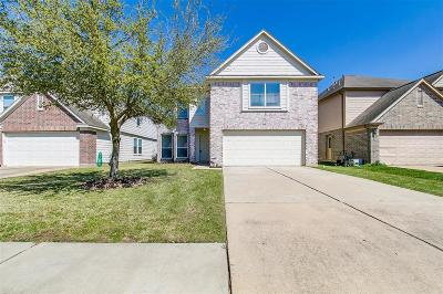 Katy Single Family Home For Sale: 20326 Ricewood Village Trail