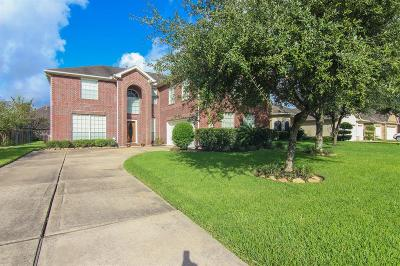 Single Family Home For Sale: 422 Sabal Palm Lane