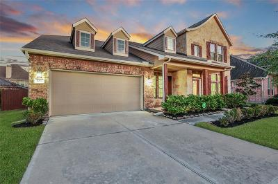 Southern Trails Single Family Home For Sale: 3007 Decker Field Lane