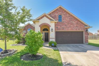 Cypress Single Family Home For Sale: 8603 Austin Thomas Drive