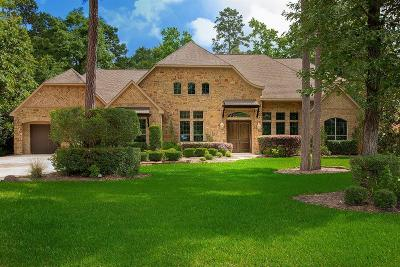 Spring Single Family Home For Sale: 4123 Balsam Fir Lane