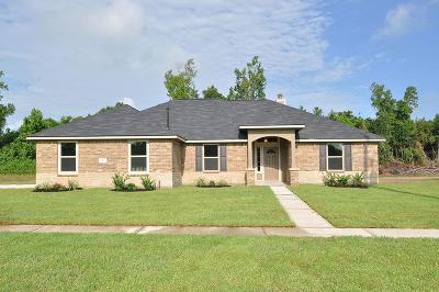 Dayton Single Family Home For Sale: 102 Dorothy
