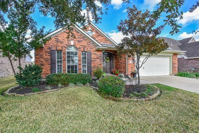 Katy Single Family Home For Sale: 2123 Blue Water Bay Drive