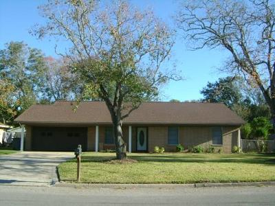 Bay City Single Family Home For Sale: 3805 Holly Glen Drive