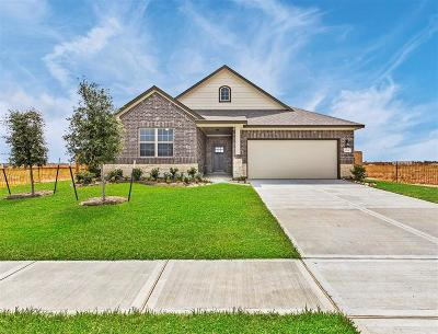Texas City Single Family Home For Sale: 3029 Red Pebble Lane