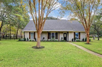 Friendswood Single Family Home For Sale: 513 Misty Lane