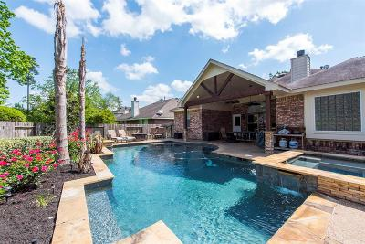 The Woodlands Single Family Home For Sale: 46 N Regan Mead Circle