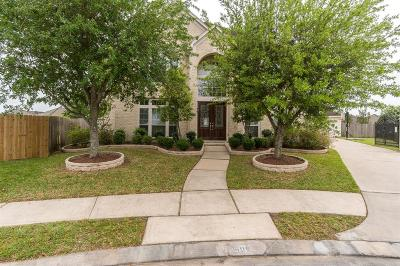 Houston Single Family Home For Sale: 10606 Penny Park Lane