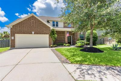 League City Single Family Home For Sale: 881 Pebblebank Lane