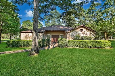 Conroe Single Family Home For Sale: 15039 Runnymede Street