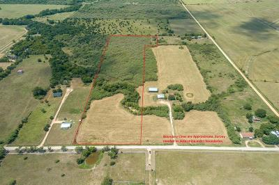 Bellville Farm & Ranch For Sale: Witte Road