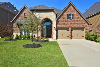 Conroe Single Family Home For Sale: 122 Deerchase Drive