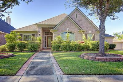 Houston Single Family Home For Sale: 4031 Elm Crest Trail