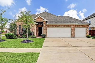 Dickinson Single Family Home For Sale: 2906 Flower Creek Ln