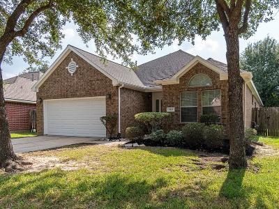 Houston Single Family Home For Sale: 4723 Wild Bluebonnet Way