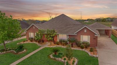 League City Single Family Home For Sale: 2123 Paintbrush Avenue