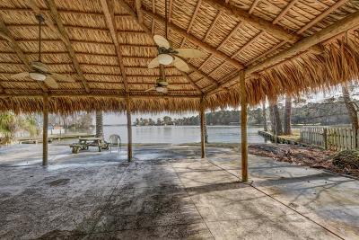 Montgomery Farm & Ranch For Sale: 3800 Brookhaven Drive