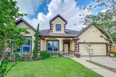 Fresno Single Family Home For Sale: 519 Dogwood Avenue