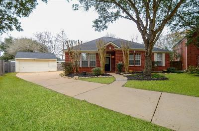 Katy Single Family Home For Sale: 1202 Lamplight Trail Drive