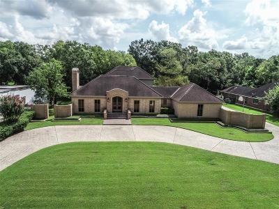Friendswood Single Family Home For Sale: 2301 Pine Drive