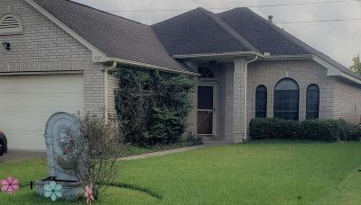Pearland Single Family Home For Sale: 707 Redwood Bend Lane