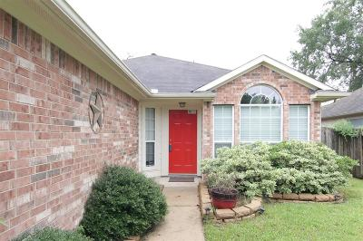 Montgomery County Single Family Home For Sale: 2302 Shady Pine Drive