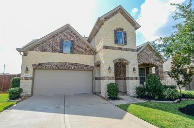 Single Family Home For Sale: 10403 Angeline Springs Lane