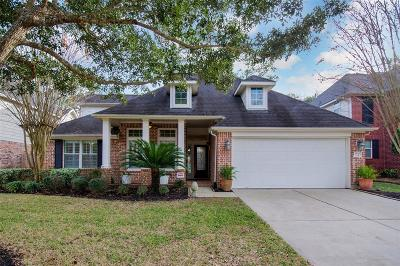 Harris County Single Family Home For Sale: 15407 Lakeport Crossing Drive