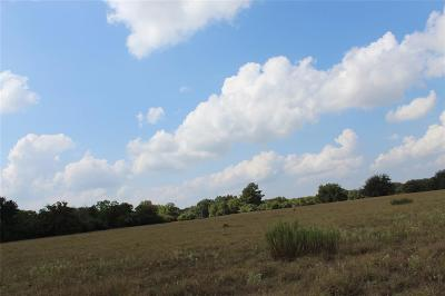 Colorado County Farm & Ranch For Sale: 401 Crooked Creek Drive
